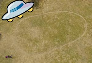 Ringen er svær. Nord-sør-retning er på 12 meter, og aust-vest er ringen på 25 meter. Foto: skjermgrabb/ NRK